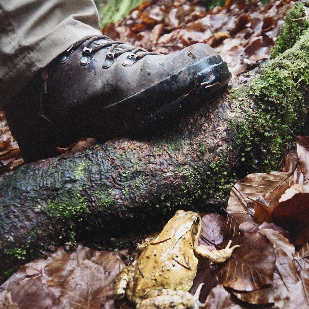 Trekking shoe meets frog
