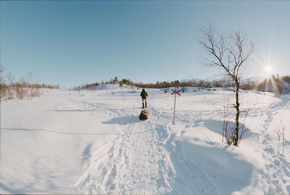 Snowshoe_Kungsladen