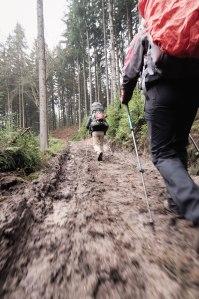 the path through mud