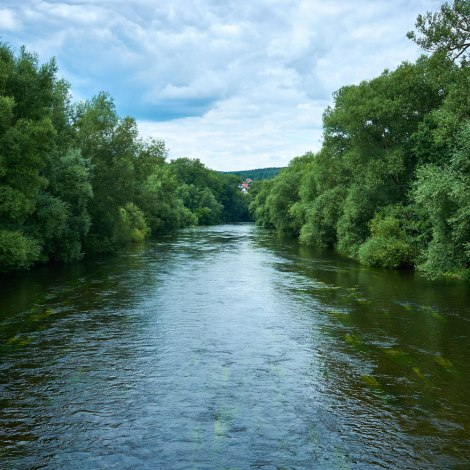 impressions of the river